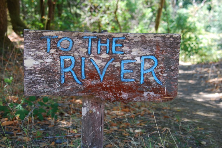 to the river <3.